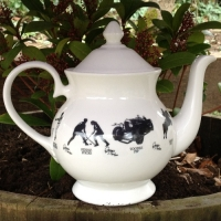 Unique British made Georgie Parker blue bone china teapot.
